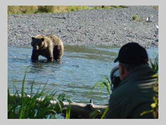 The Impacts That Bear Viewers Sport Fishermen Rafters And Hikers Have On Kodiak Bears They Hope To Use What Learn Develop Regulations